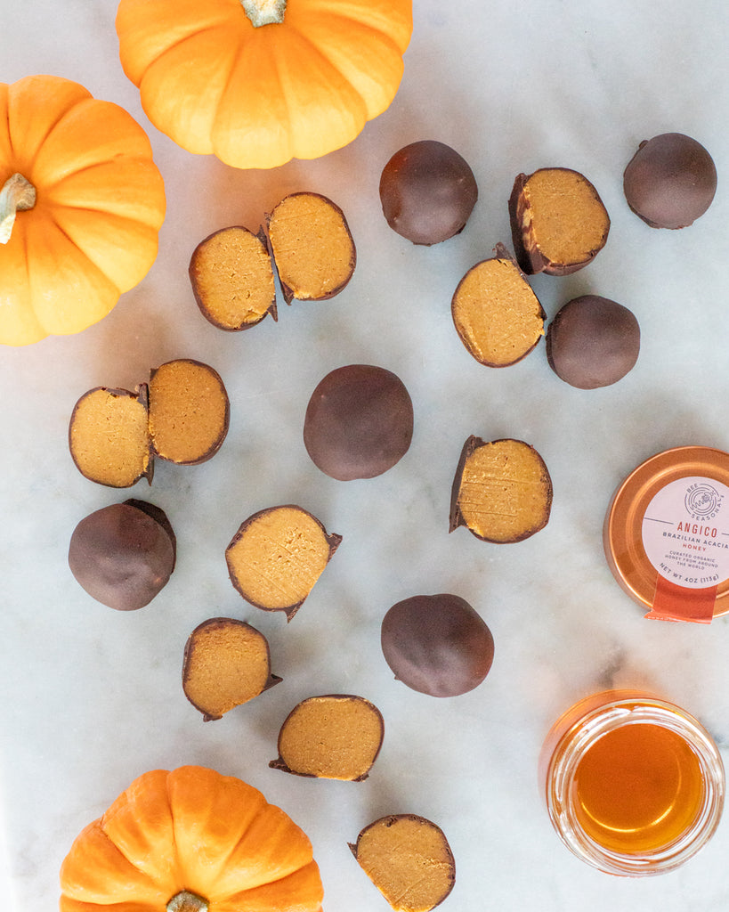 Pumpkin Coconut Honey Truffles