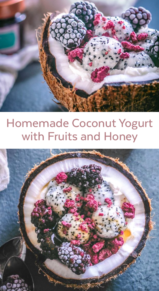 Homemade Coconut Yogurt with Fruits and Honey