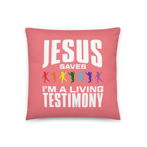 Born Again Testimony Prayer Pillow