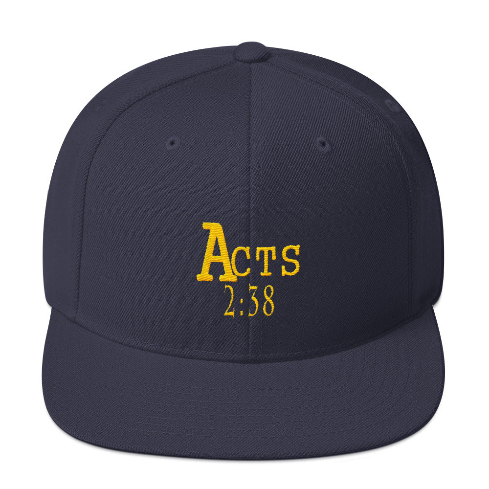 Acts 2:38 Gold Embroidery Snapback Hat