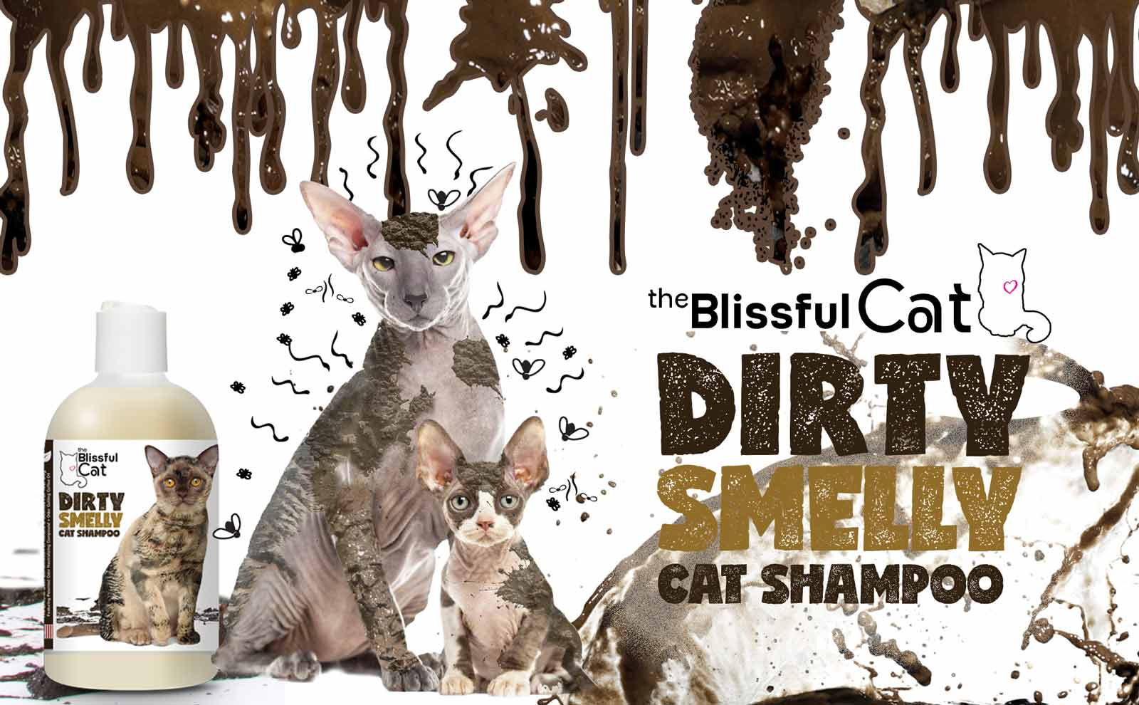 dirty smelly cat