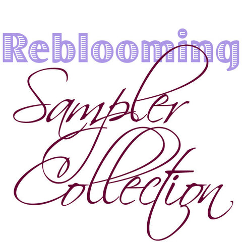 Reblooming Collection