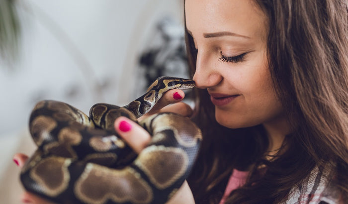 14 MORE Reptile Care Myths — DEBUNKED!