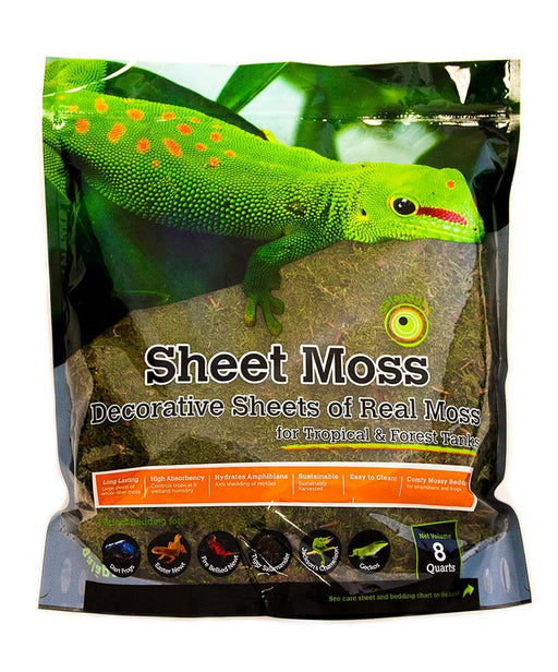 Galapagos Sheet Moss Fresh Green Stand-Up Pouch 8qt