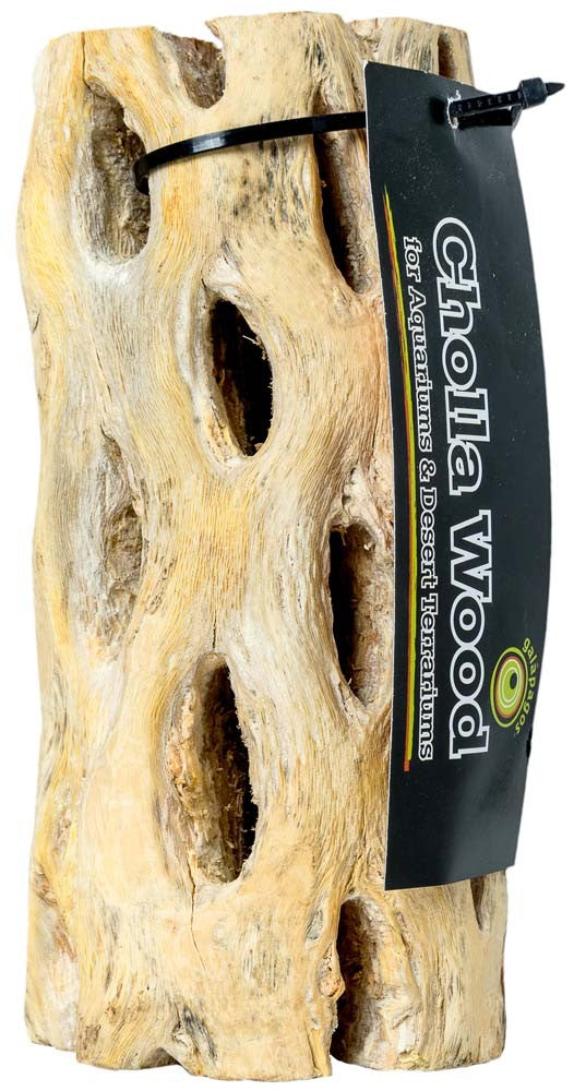 Galapagos Cholla Wood, 12""