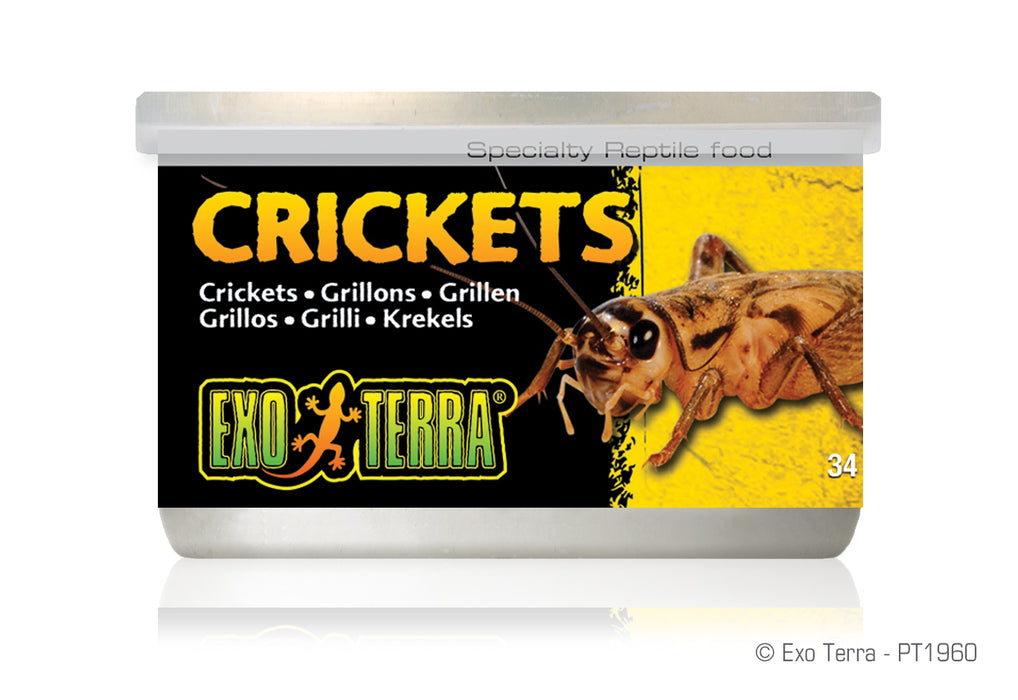 Exo Terra Canned Food Crickets