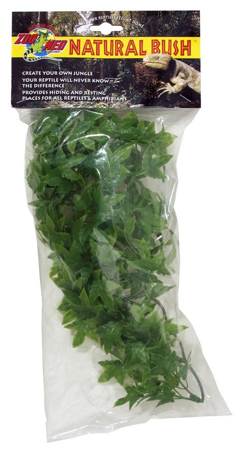Zoo Med Natural Bush™ Plants – Congo Ivy Small