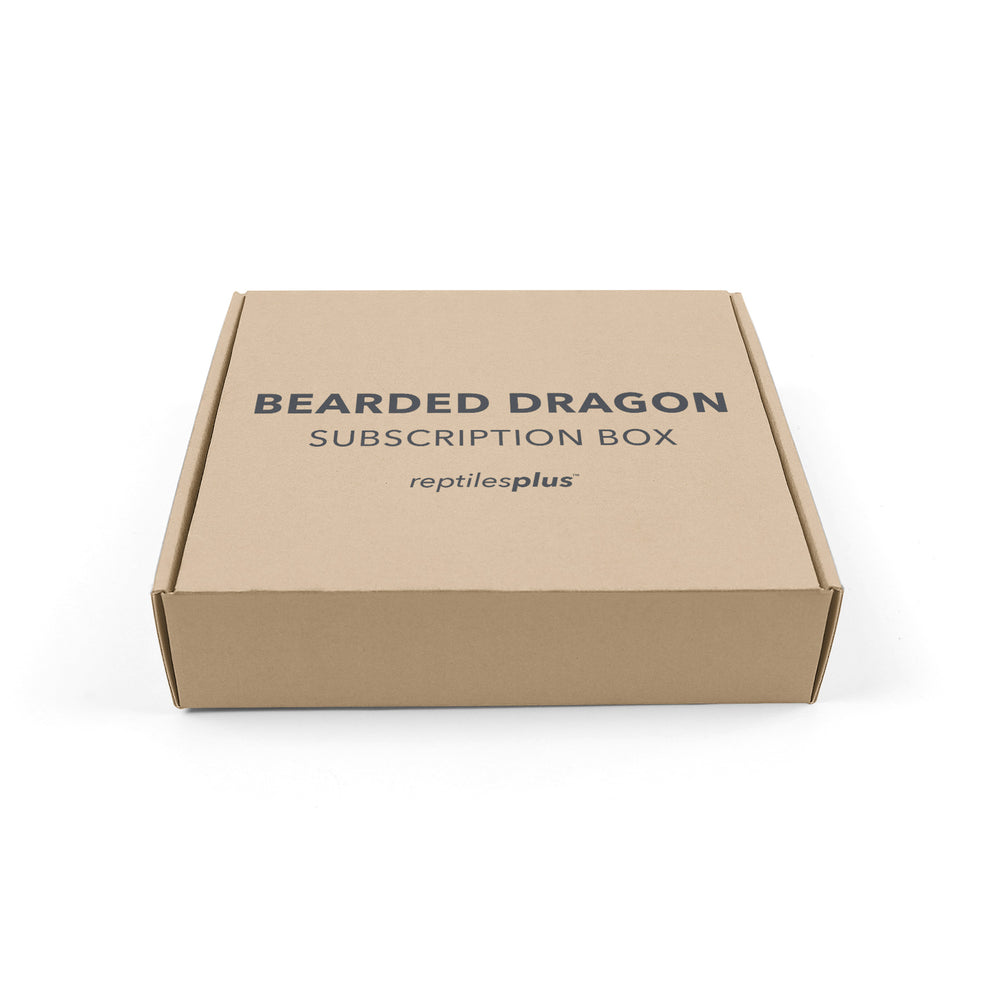 Bearded Dragon Subscription Box