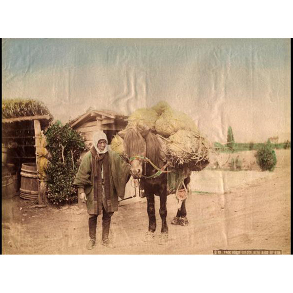 Hand-tinted Meiji Era Photograph | Farmer and Horse | Japanese Antique Photography | Albumin Photography | Japanese Decor