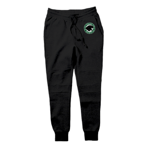 "D81 ""Black Panther Power"" Tech Fleece Hoodie & Joggers - District81 Clothing"