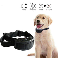 Best Anti Bark Dog Collar