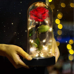Eternity LED Valentine Red Rose (The Rose Flower That Last Forever)
