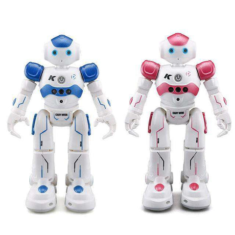 Singing Dancing Gesture Robot