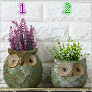 Owl  Decorative Ceramic Pots