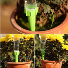 10pcs Automatic Watering Irrigation Spike