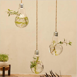 Wall Hang Glass Flower Plant Vase