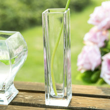 Modern Style Glass Vase Transparent Small