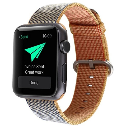 Woven Nylon Apple Watch Band