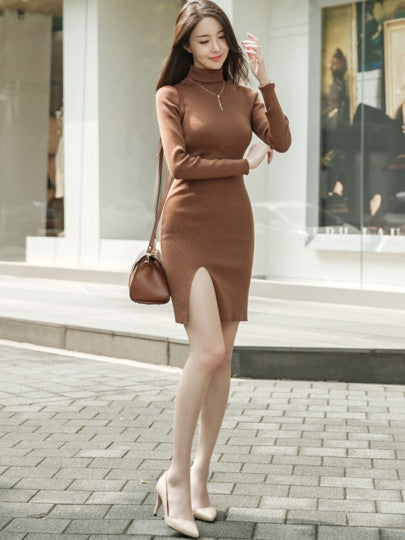 Women's Vintage Style Bodycon Turtleneck Sweater Dress