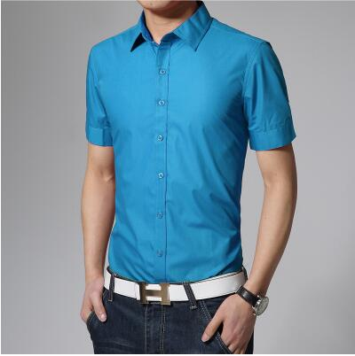 Men's Assorted Short Sleeve Slim Fit Solid Shirt w/ Peaked Collar - Erbana 88