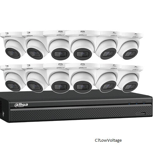 Dahua Technology N564E124S IP KIT 16-CH NVR + 12 X 4MP, STARLIGHT MINI EYEBALL CAMERAS , 4TB HDD Included.