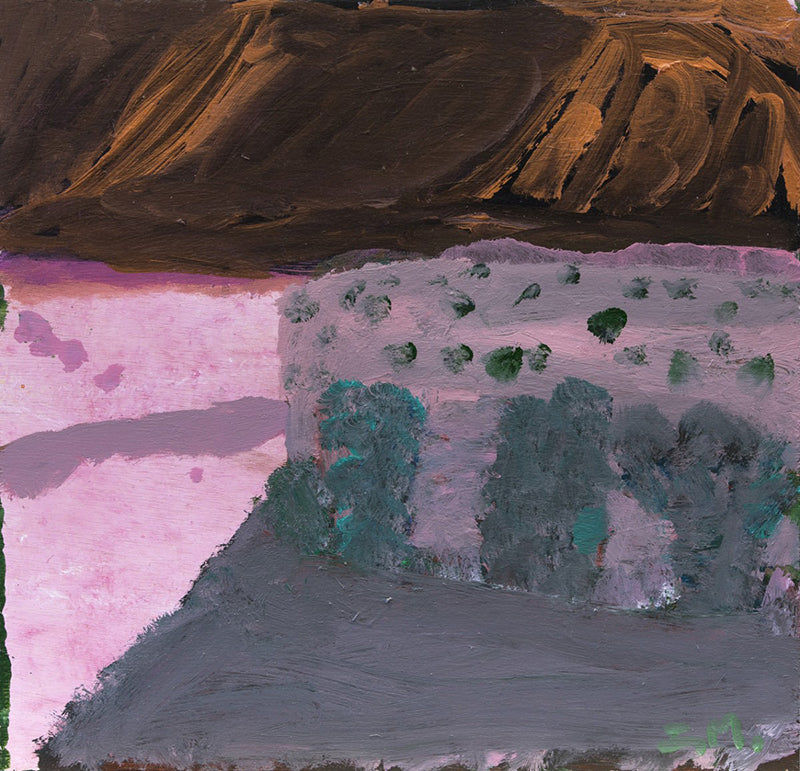 Idris Murphy Driving past the ranges from his exhibition The abundance king street gallery Sydney