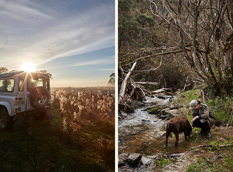 A landrover in a paddock in the early morning and a woman and a chocolate labrador down by a creek