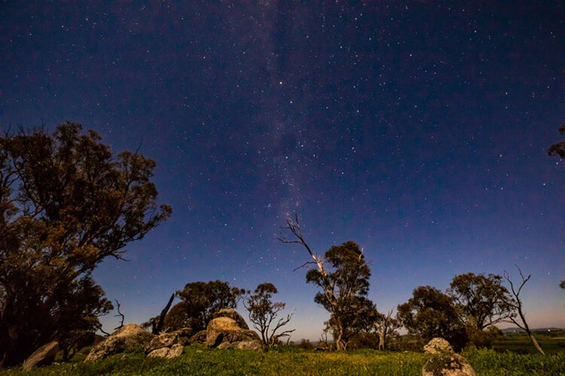 Nightscape on 'Wooroola'. Much of the Under a Winter Moon series was created in this location on Julia's family farm. Photo c/o Jacqui Cooper