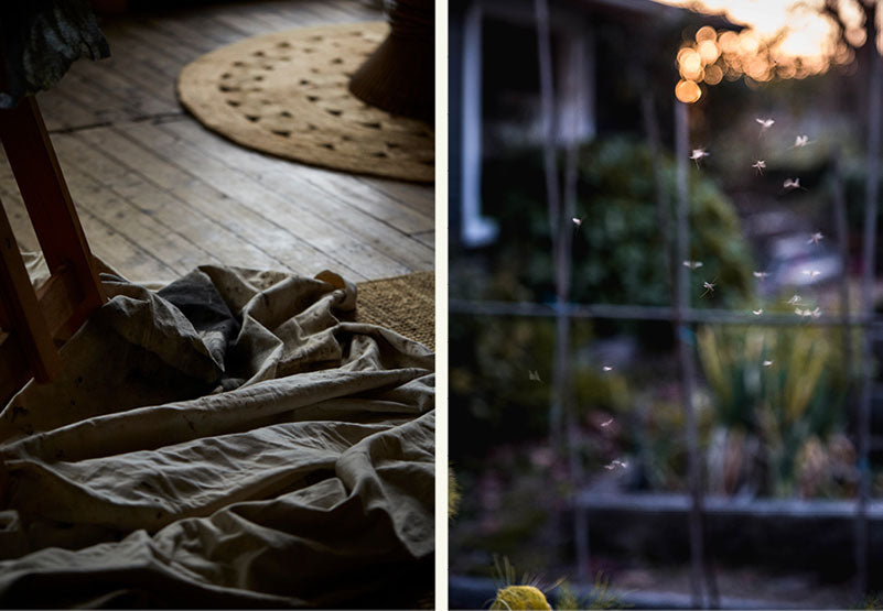 Details of light on fabric and garden insects