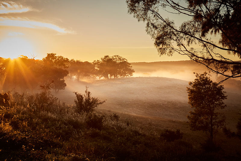 A beautiful sunrise in the Australian landscape at Southern Wild Co