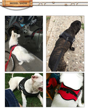 Load image into Gallery viewer, DOG HARNESS
