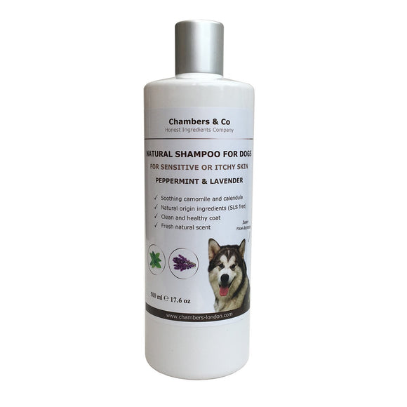 Best Natural Shampoo for Dogs with Sensitive or Itchy Skin - DogSmart.ie