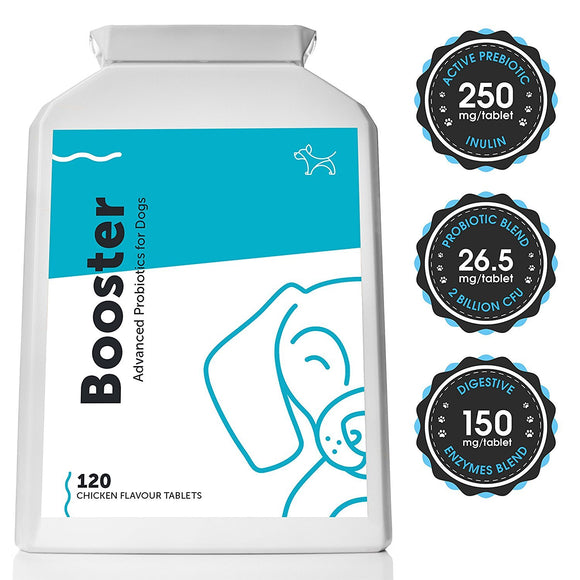 Advanced Probiotic & Prebiotic for Dogs (120 Tablets) - DogSmart.ie