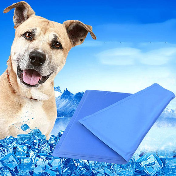 Summer Chill Out Always Cool Dog Mat - DogSmart.ie