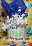 Hap Pee Birthday TP HL2462 embroidery file