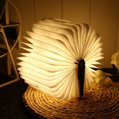 Funlink™ Booklovers Rechargeable Book Lamp