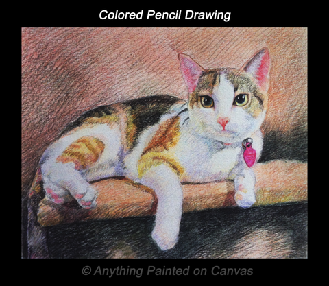 Colored pencil drawing of a Calico cat on a shelf