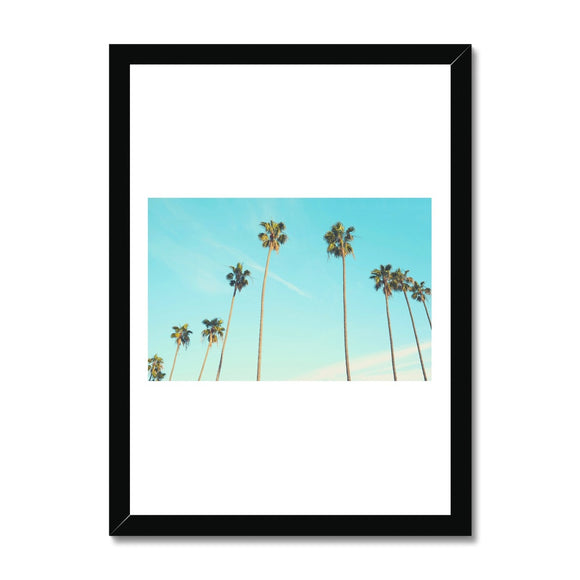 Palm Tree Two Framed Print