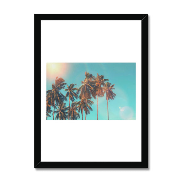 Palm Tree Three Framed Print