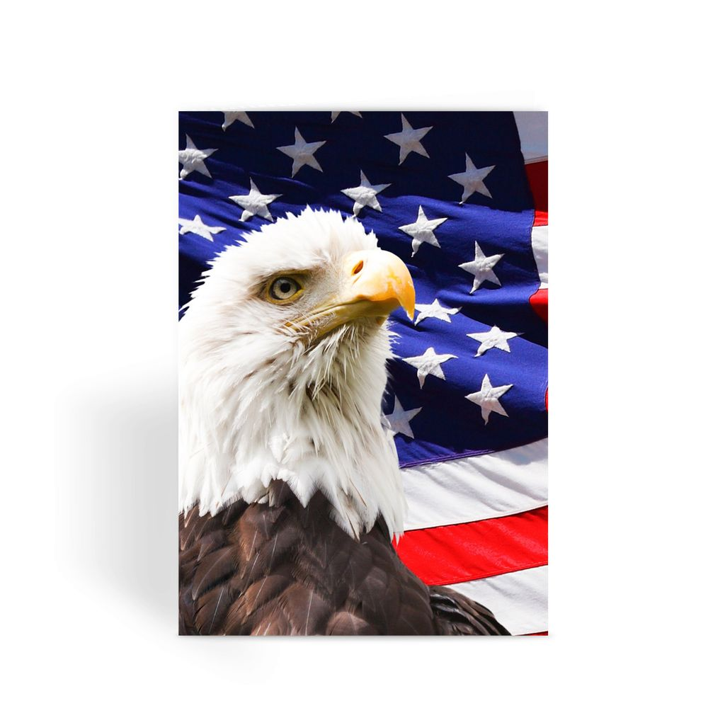 American Eagle And Usa Flag Greeting Card Prints Flagdesignproducts.com