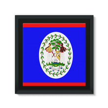 Flag Of Belize Framed Canvas Wall Decor Flagdesignproducts.com