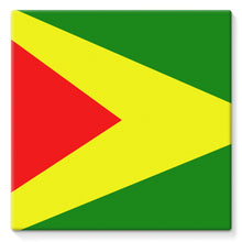 Flag Of Guyana Stretched Eco-Canvas Wall Decor Flagdesignproducts.com