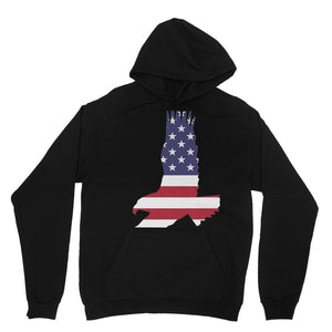 Usa Flag American Eagle Heavy Blend Hooded Sweatshirt Apparel Flagdesignproducts.com