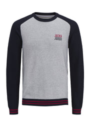 JCOBold Light Grey Crew Neck Knit. 12148157