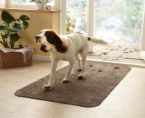 Door-Step Cleaning Mat