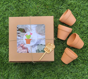 Let Love Grow Valentine's gift set kit with pots FEBRUARY