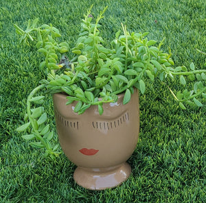 Celfie Face pot FEBRUARY