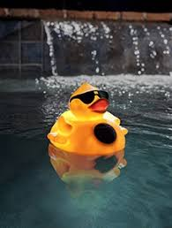 Solar Light Up Duck Pool Chlorinator by Game