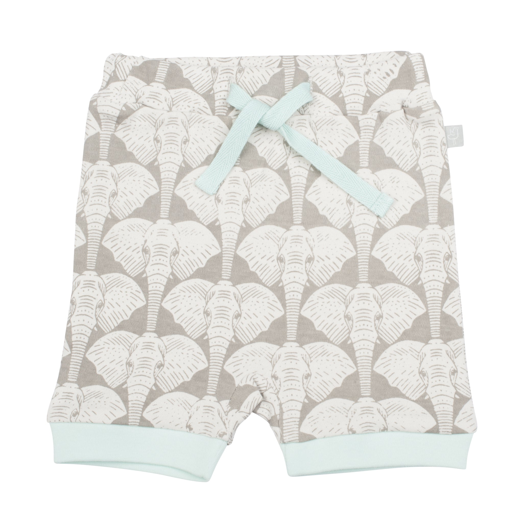 Shorts in Elephant