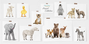 baby animal collection from paper llamas original art